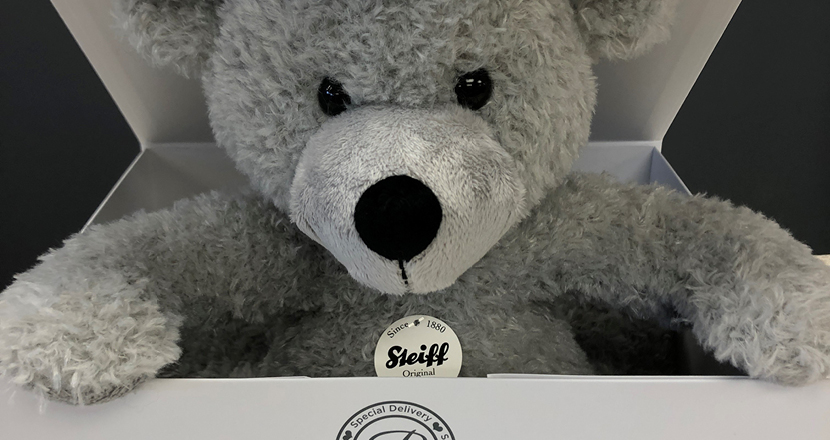 A Steiff bear available at Betty McKensie