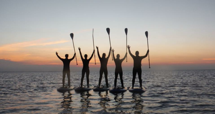 group of people in the sea standing on paddle boards